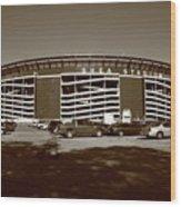 Shea Stadium - New York Mets Wood Print
