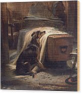 Shepherds Chief Mourner Wood Print