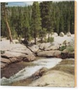 Sierra Nevada Mountain Stream Wood Print