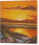 Siesta Sunset Wood Print