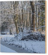 Snowtime Wood Print