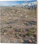 Snowy Four Peaks Arizona Wood Print