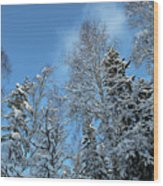 Snowy Trees Against A Blue Sky Wood Print