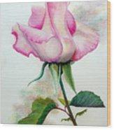 So Pink Wood Print