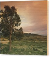 Spanish Landscape Wood Print