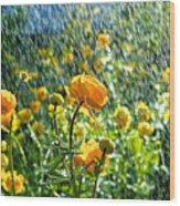 Spring Flowers In The Rain Wood Print