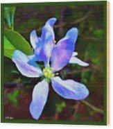 Spring Time Series Painting Wood Print