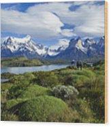 Springtime In Patagonia Wood Print