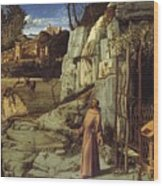 St. Francis In The Desert Wood Print