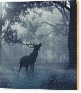 Stag Wood Print