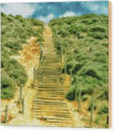 Steps To The Beach Wood Print