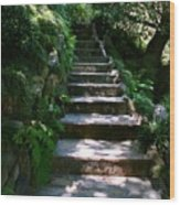 Stone Steps  Wood Print