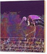 Stork Bird Fly Plumage Nature  Wood Print