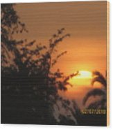 Sun View Wood Print