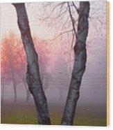 Sunrise Trees Fog Wood Print