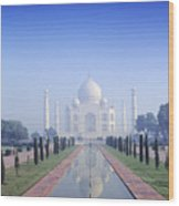 Taj Mahal View Wood Print