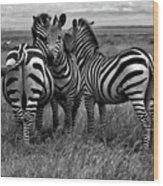 Tanzania Wood Print