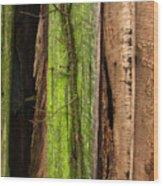Texture Series Wood Print