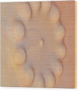 Textures. Gaudi. Wood Print