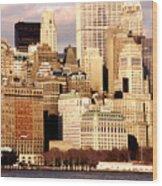 The Battery- New York City Wood Print