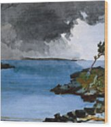 The Coming Storm Wood Print