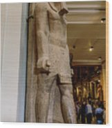 The Egyptian Museum Of Antiquities - Cairo Egypt Wood Print