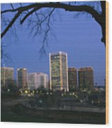 The Richmond, Virginia Skyline Wood Print