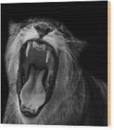 The Roar Wood Print