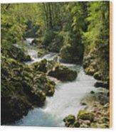 The Vintgar Gorge Wood Print