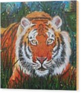 Tiger- Large Work Wood Print