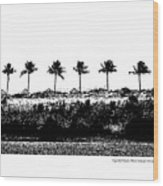 Tiger Tail Beach Wood Print