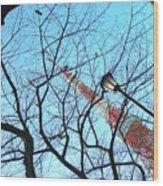 Tokyo Tower Wood Print