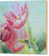 Tulipes Wood Print