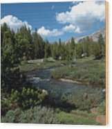 Tuolumne Meadows Wood Print