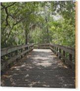 Turkey Creek Wood Print