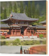 Valley Of The Temples Wood Print