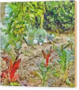 Vegetable Garden Wood Print