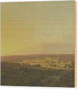 View Of Catania Wood Print
