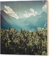 View Of Tatra Mountains From Hiking Trail. Poland. Europe.  Wood Print