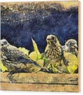 Vintage Bluebird Print Wood Print