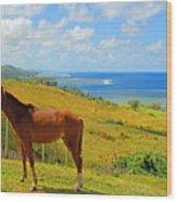 Viti Levu, Coral Coast Wood Print