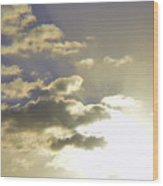 Vuelo Al Sol Wood Print