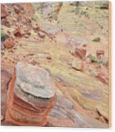 Wash 3 Color In Valley Of Fire Wood Print