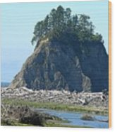 Washington Coast  Wood Print