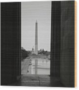 Washington Monument And Capitol Hill Wood Print