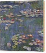 Water Lilies, 1916 Wood Print