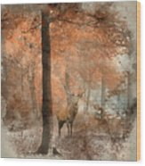 Watercolour Painting Of Beautiful Image Of Red Deer Stag In Fogg Wood Print