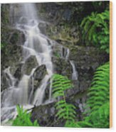 Waterfall In Cradle Mountain Wood Print