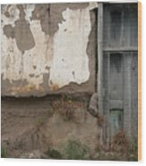 Weathered Door In A Wall Wood Print