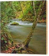Whatcom Creek Wood Print by Idaho Scenic Images Linda Lantzy